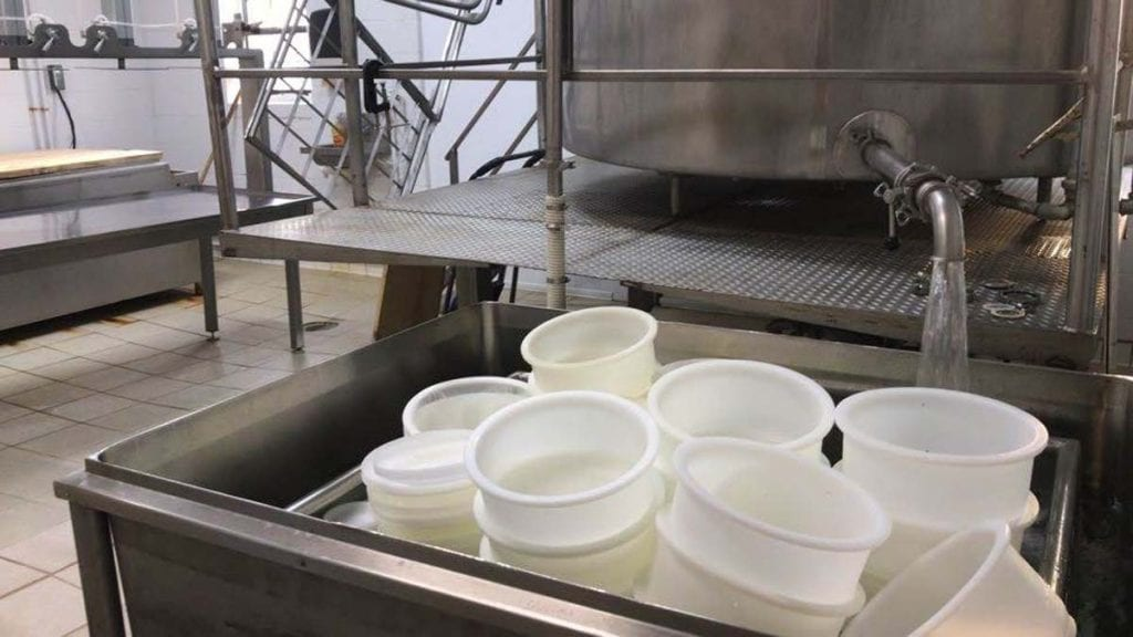 Sanitizing cheesemaking equipment