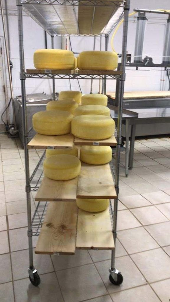 Drying the cheese